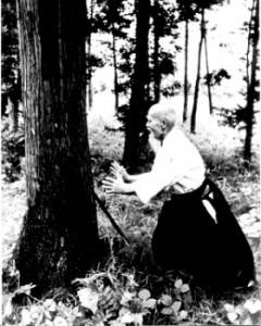 OSensei-kiai-arbre