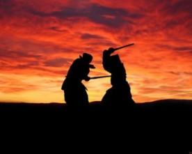 Pourquoi les arts martiaux plaisent-ils tant aux occidentaux ?