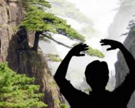 Budo : la quête du geste parfait