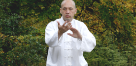 Thierry Costa : le Serpent du Taichichuan