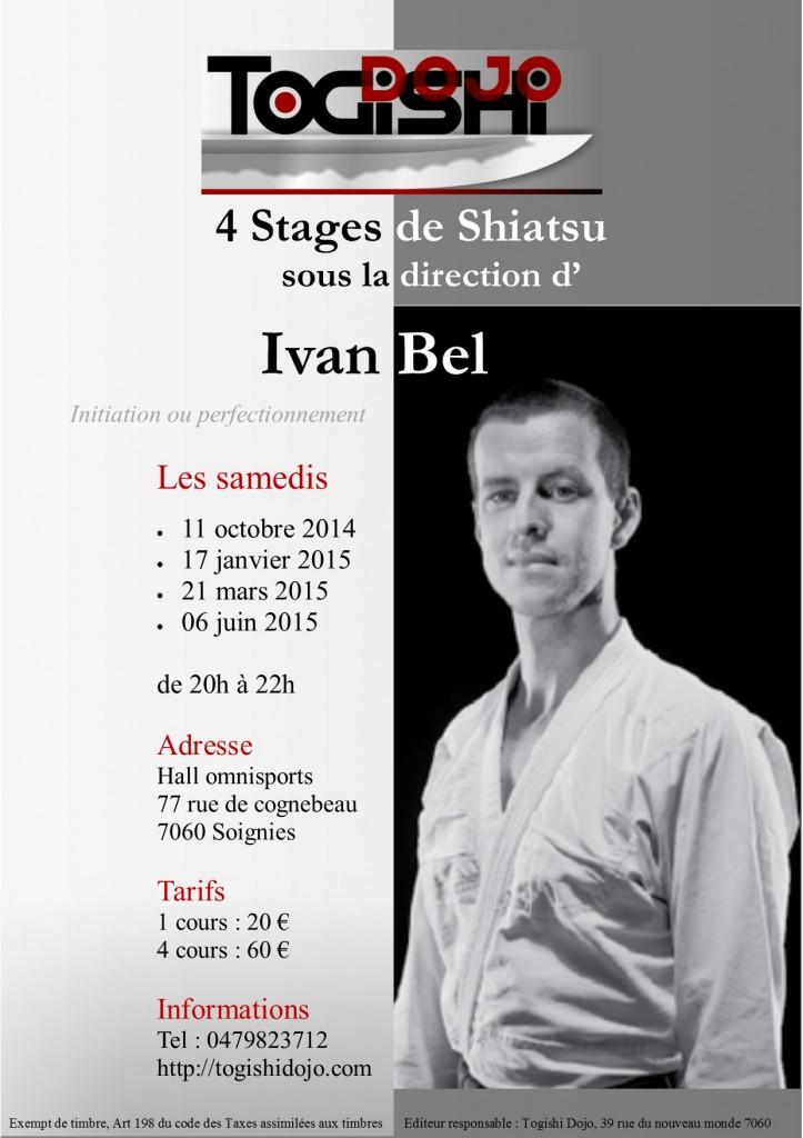 Affiche Stages Shiatsu 2014 2015