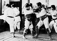 plastron karate