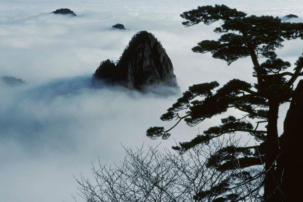 meditation paysage