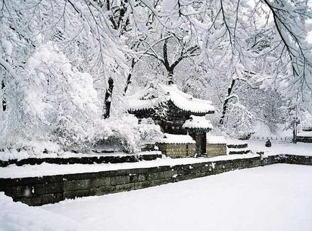 shiatsu hiver