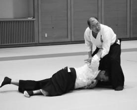 Shiatsu : entretien avec Irie Yasuhiro sensei